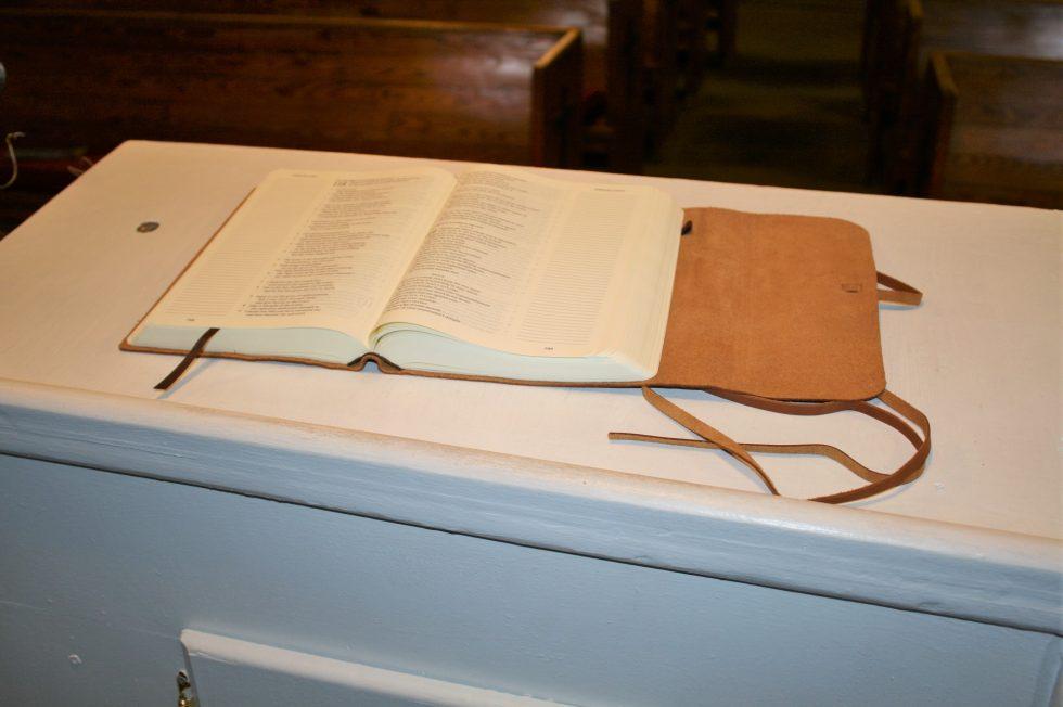 ESV Single Column Journaling Bible Large Print Edition (35)