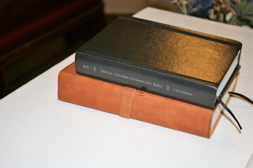 ESV Single Column Journaling Bible Large Print Edition (43)