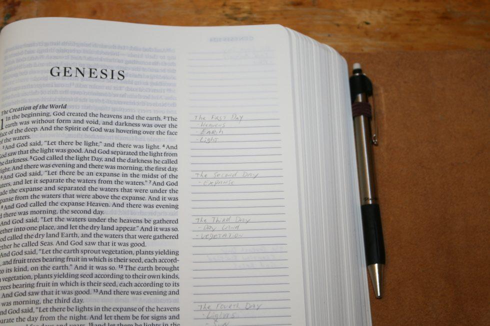 ESV Single Column Journaling Bible Large Print Edition (44)