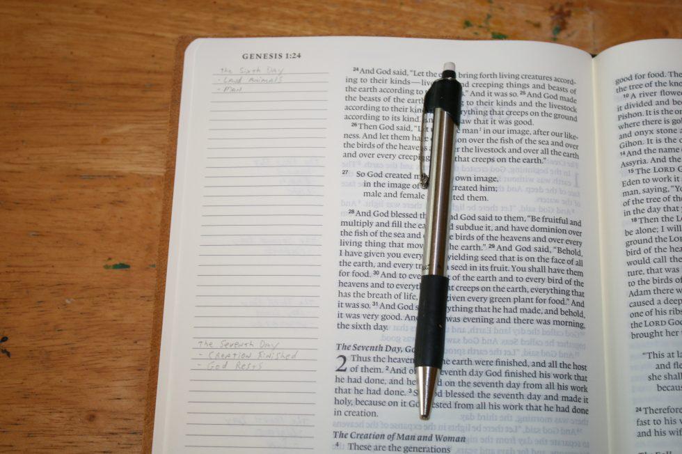 ESV Single Column Journaling Bible Large Print Edition (47)