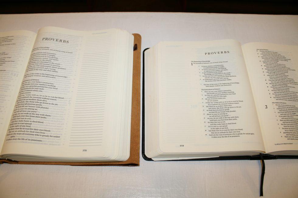 ESV Single Column Journaling Bible Large Print Edition (5)
