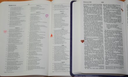 ROUNDz Stamps – Bible Set from Mason Row