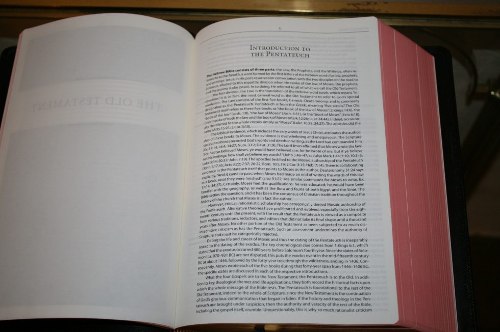 The Reformation Heritage KJV Study Bible (20)