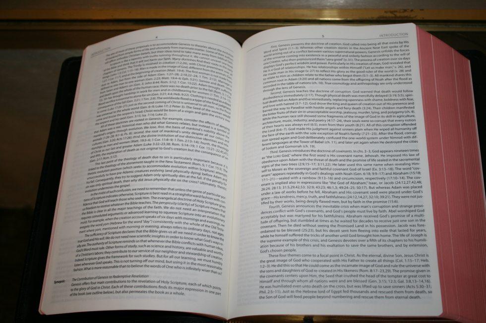 The Reformation Heritage KJV Study Bible (22)