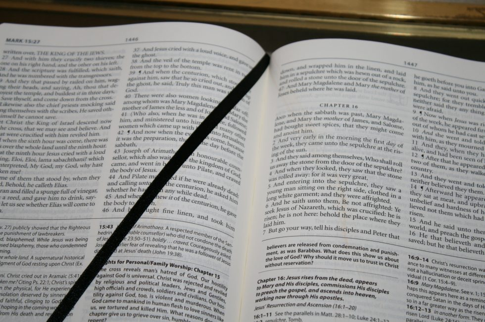 The Reformation Heritage KJV Study Bible (32)