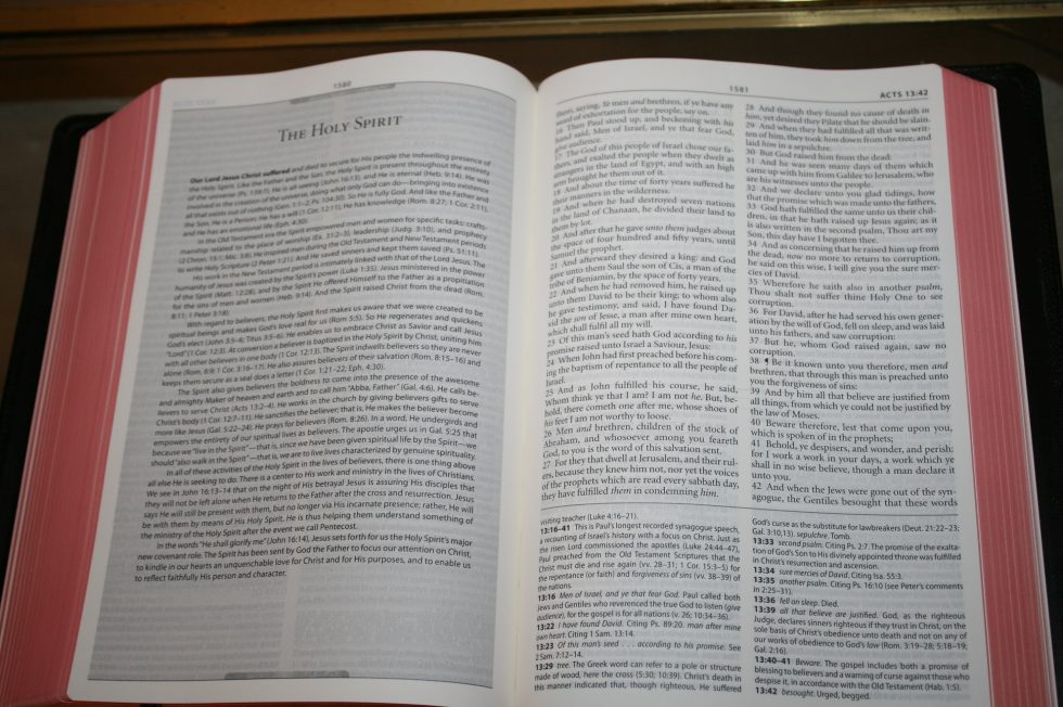 The Reformation Heritage KJV Study Bible (34)