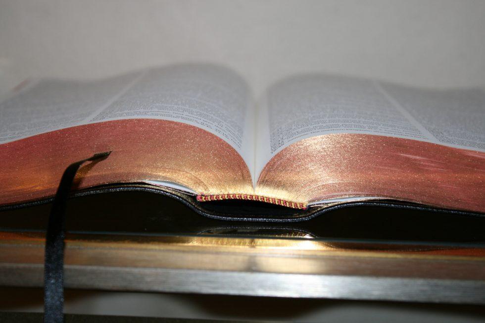 The Reformation Heritage KJV Study Bible (35)