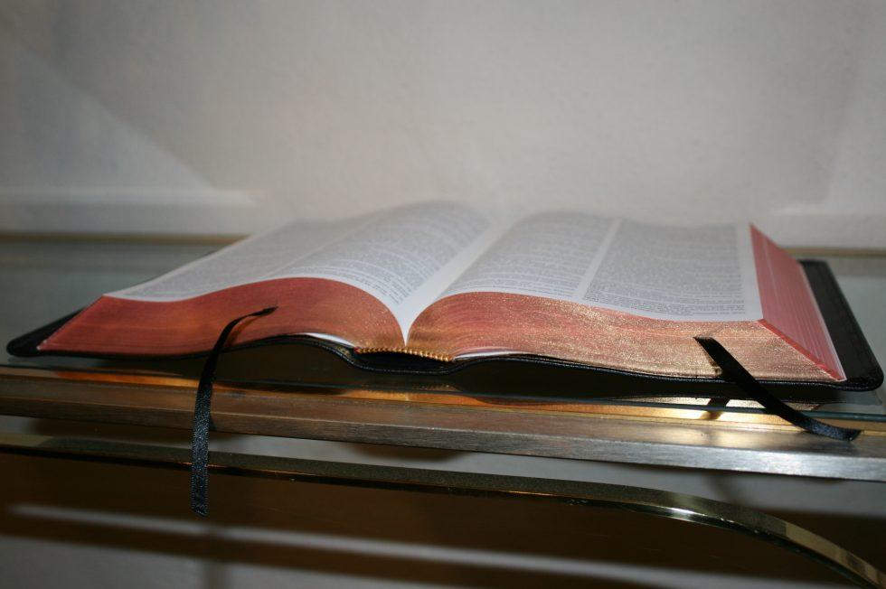 The Reformation Heritage KJV Study Bible (36)