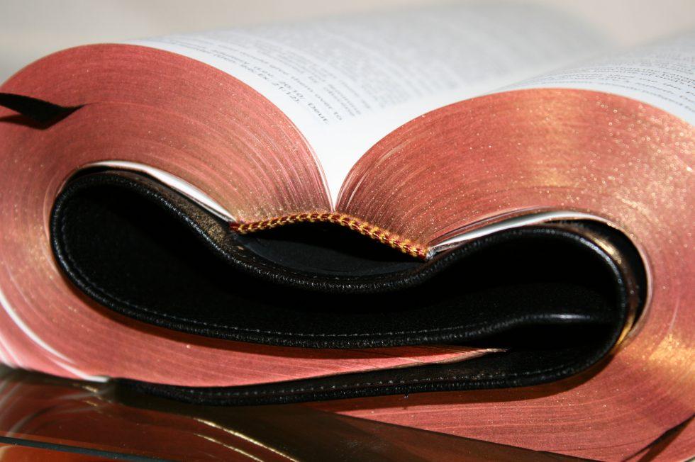 The Reformation Heritage KJV Study Bible (38)