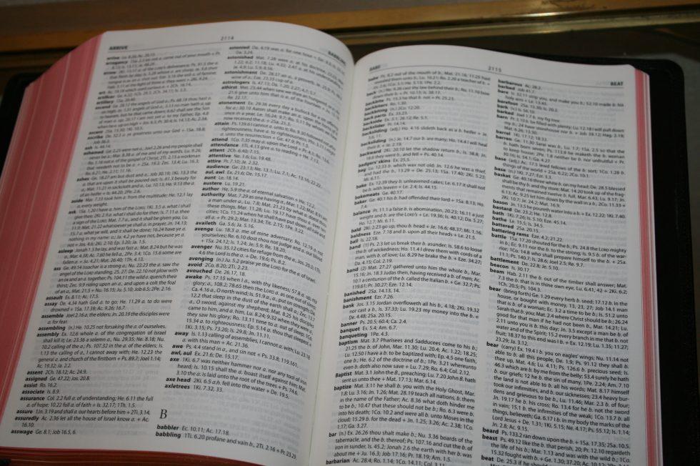 The Reformation Heritage KJV Study Bible (45)