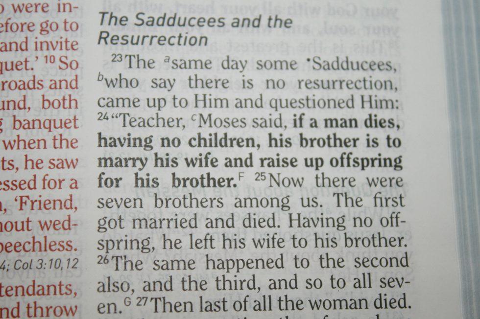 holman-hcsb-military-families-bible-29