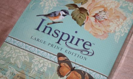 Inspire Bible: Large Print Edition Review
