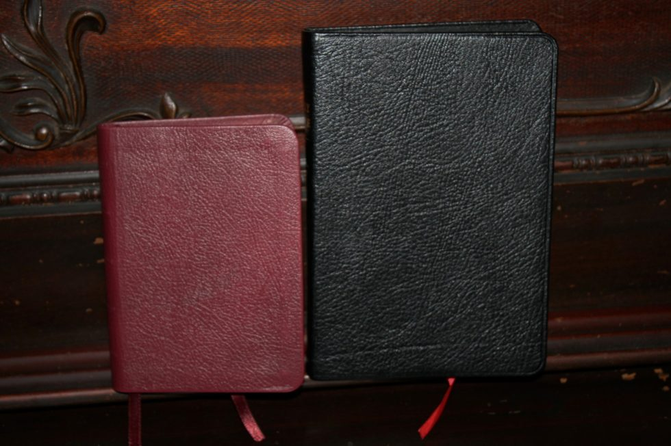 TBS Pocket Reference Bible (24)
