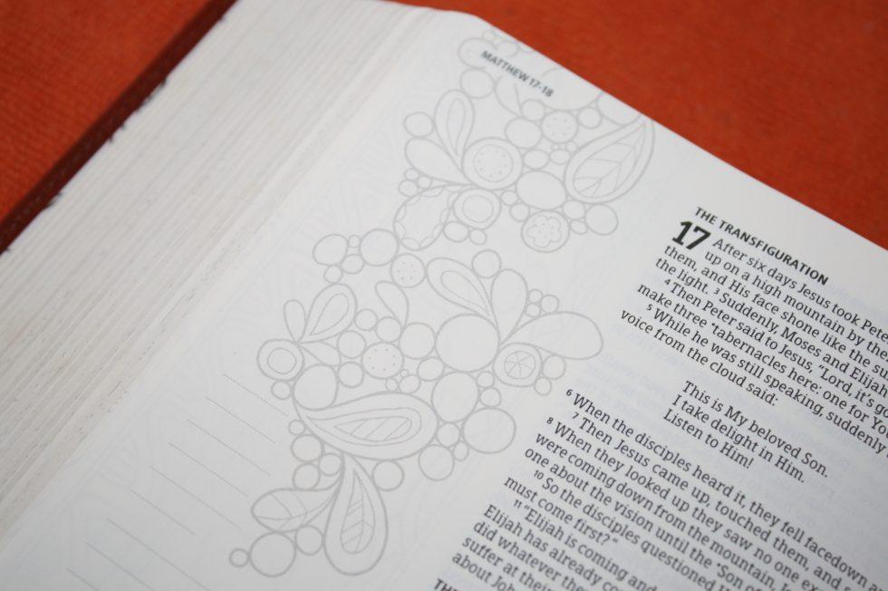 hcsb-illustrators-notetaking-bible-30