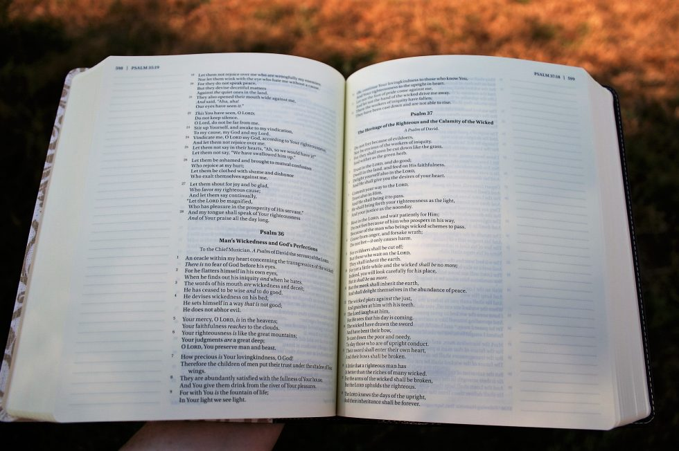sneak-peek-journal-the-word-bible-4