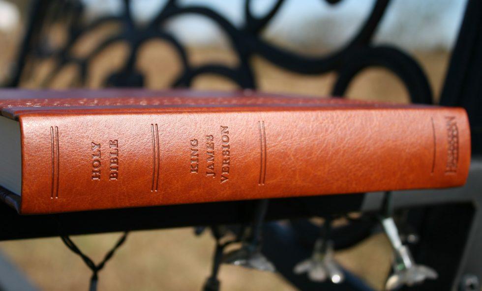 hendrickson-kjv-expression-bible-2