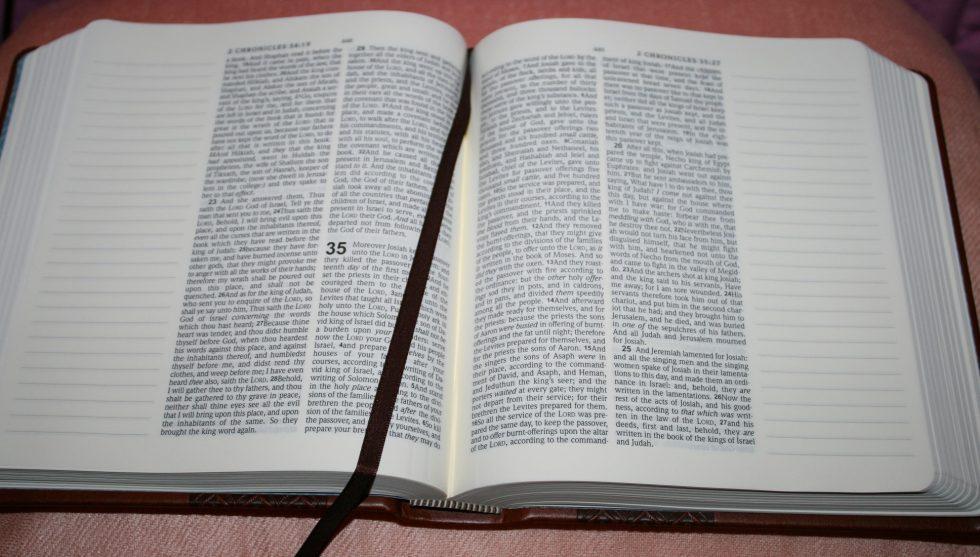 hendrickson-kjv-expression-bible-3
