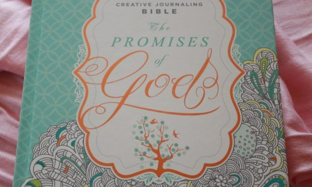 Quick Look – MEV The Promises of God Creative Journaling Bible