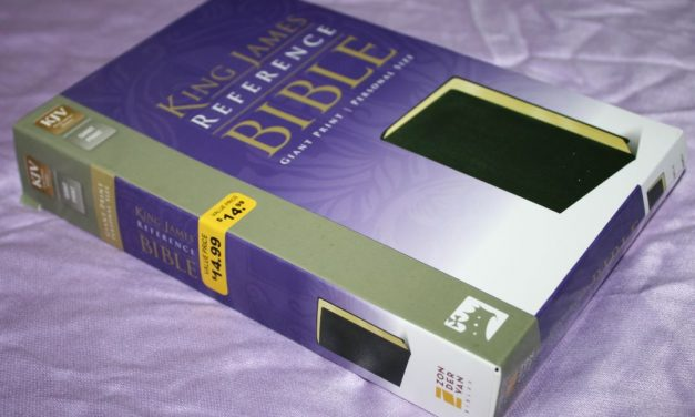 Zondervan KJV Giant Print Personal Size Reference Bible – Review