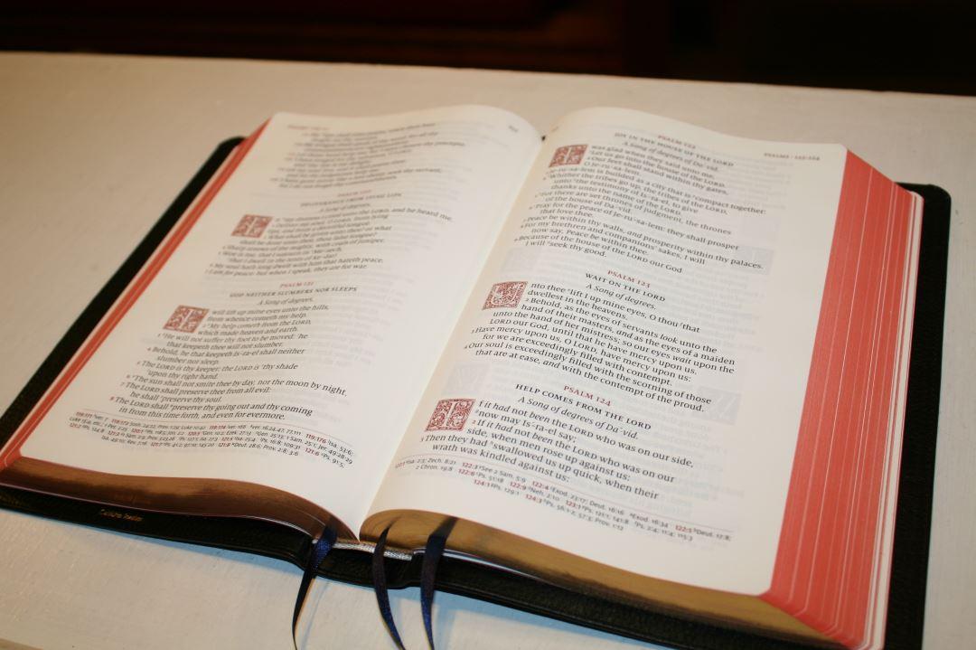 Schuyler Canterbury 56 Bible Buying Guide