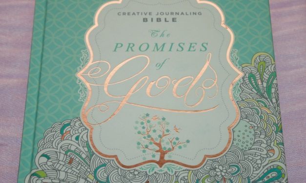 MEV The Promises of God Creative Journaling Bible Review