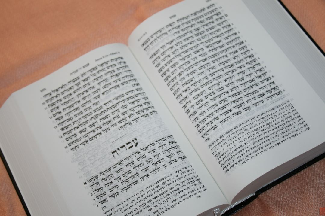 Hebrew and Greek Bible (30) - Bible Buying Guide