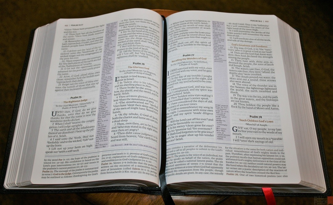 Nelson Kjv Study Bible 7 Bible Buying Guide