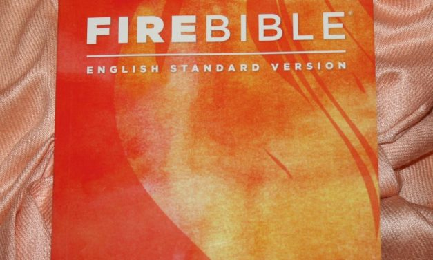 Hendrickson's ESV Fire Bible Review