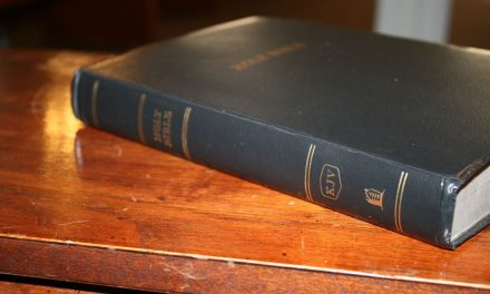 Thomas Nelson Giant Print KJV Reference Bible – Review