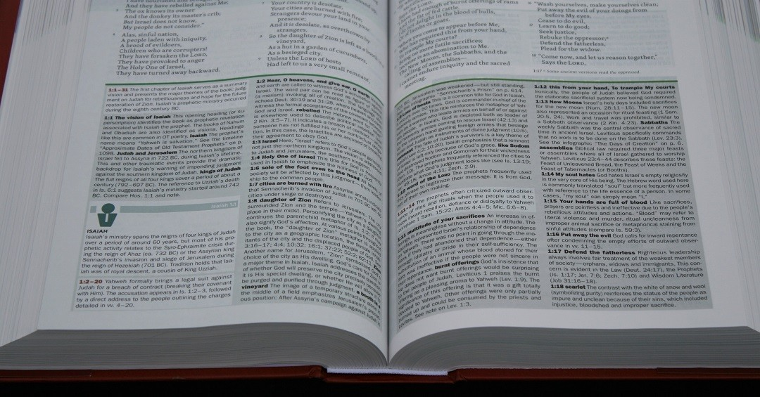 NKJV Faithlife Illustrated Study Bible Review - Bible Buying Guide