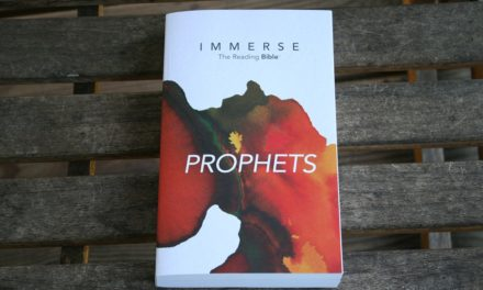 Immerse Prophets Bible Review