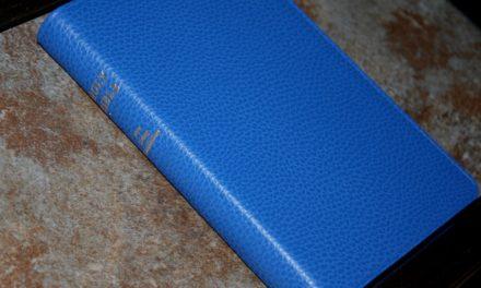 Cambridge NLT Pitt Minion in Blue Calf Split Leather
