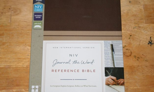 NIV Journal the Word Reference Bible Review