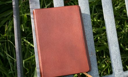 Schuyler Journal in Antique Marble Brown Review