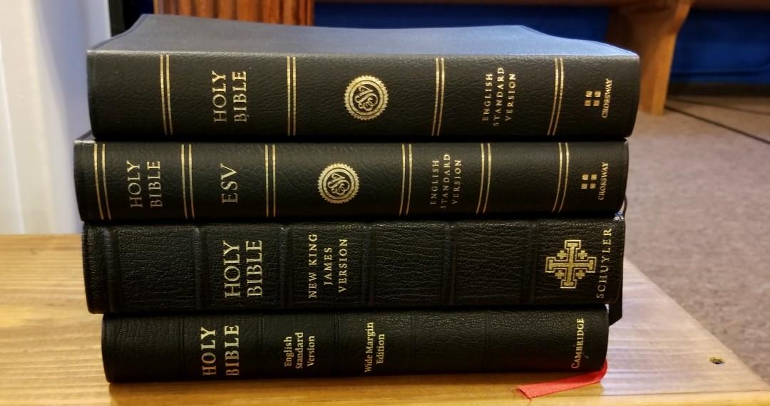 ESV Large Print Wide Margin Bible Review - Bible Buying Guide