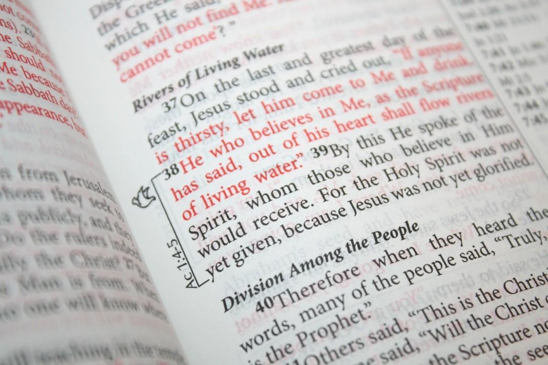 MEV Fire Bible Review - Bible Buying Guide