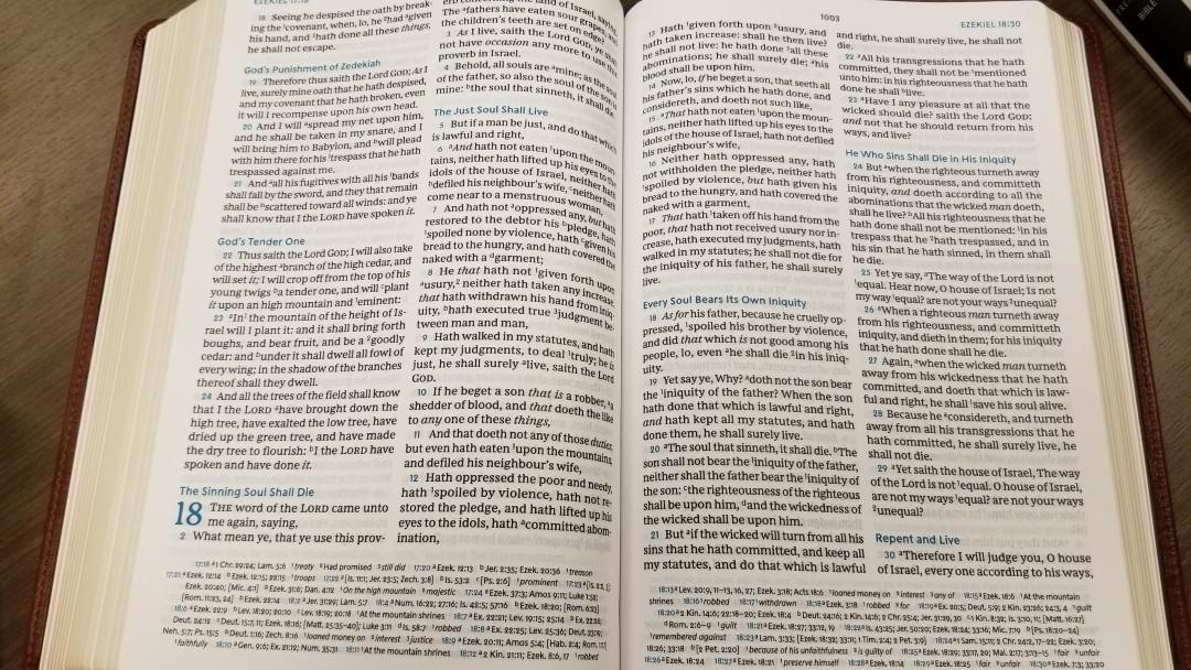 Thomas Nelson Preaching Bible Sneak Peek Bible Buying Guide