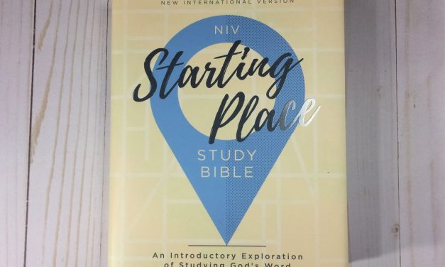 NIV Starting Place Study Bible Review
