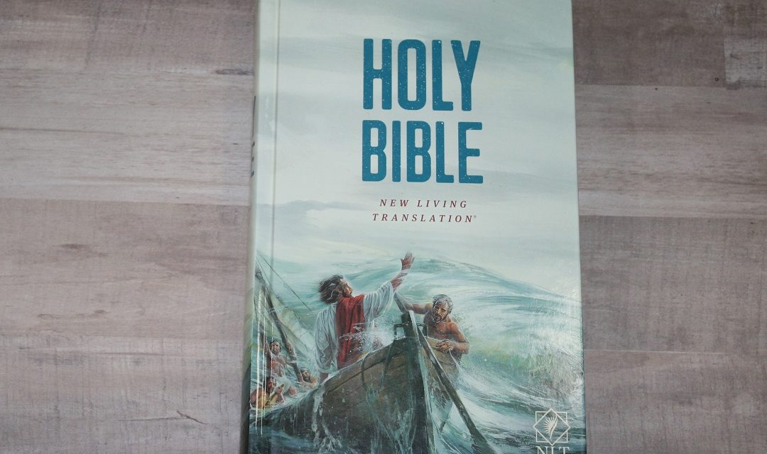 NLT Children's Bible Review