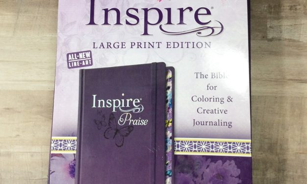 Large Print NLT Inspire Praise Bible Review