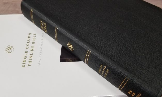 ESV Single Column Thinline Bible Review