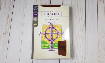 Zondervan NRSV Thinline Large Print Bible Review