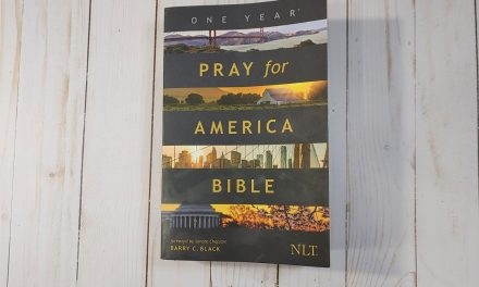 NLT Pray for America Bible Review