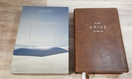 NET Abide Bible Review