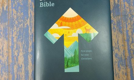 NLT New Believer's Bible Review