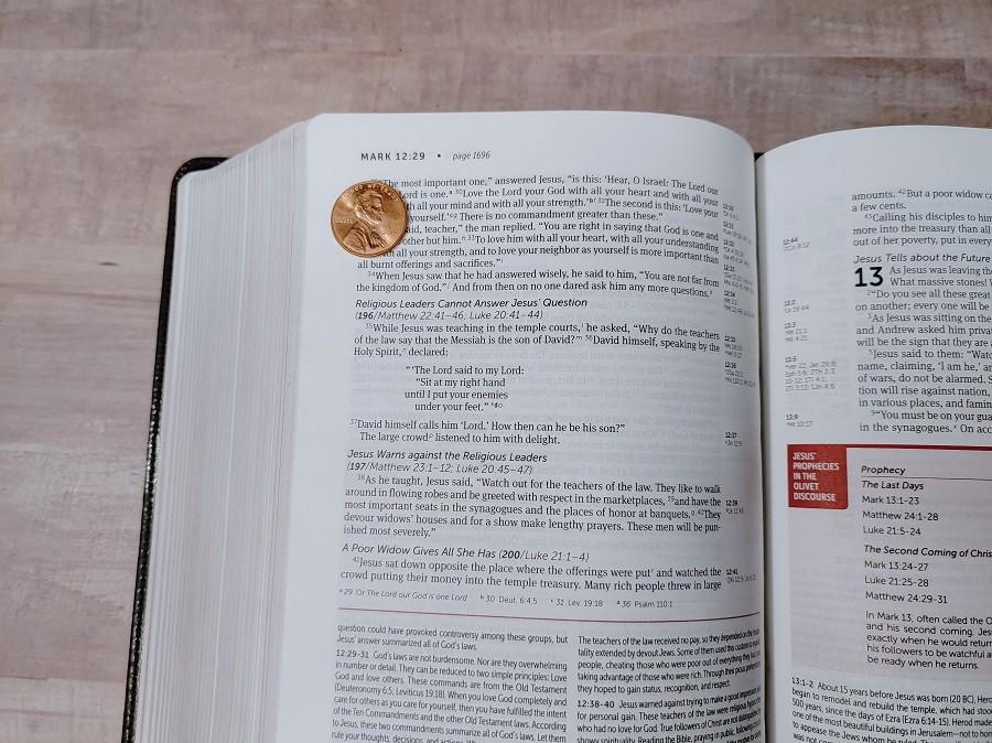 Personal Size NIV Life Application Study Bible Text Size