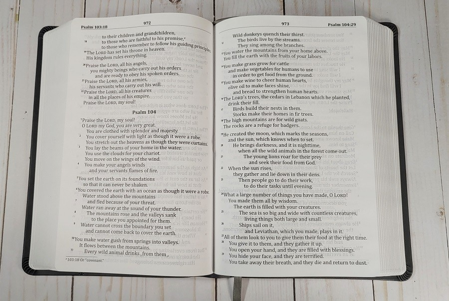God's Word Deluxe Large Print Bible Psalms