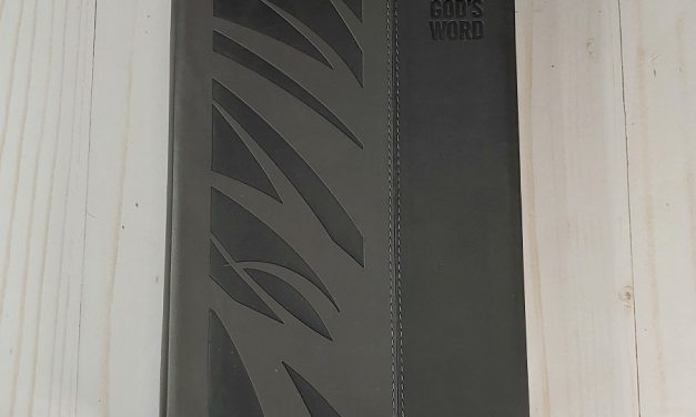 God's Word Deluxe Large Print Bible Review