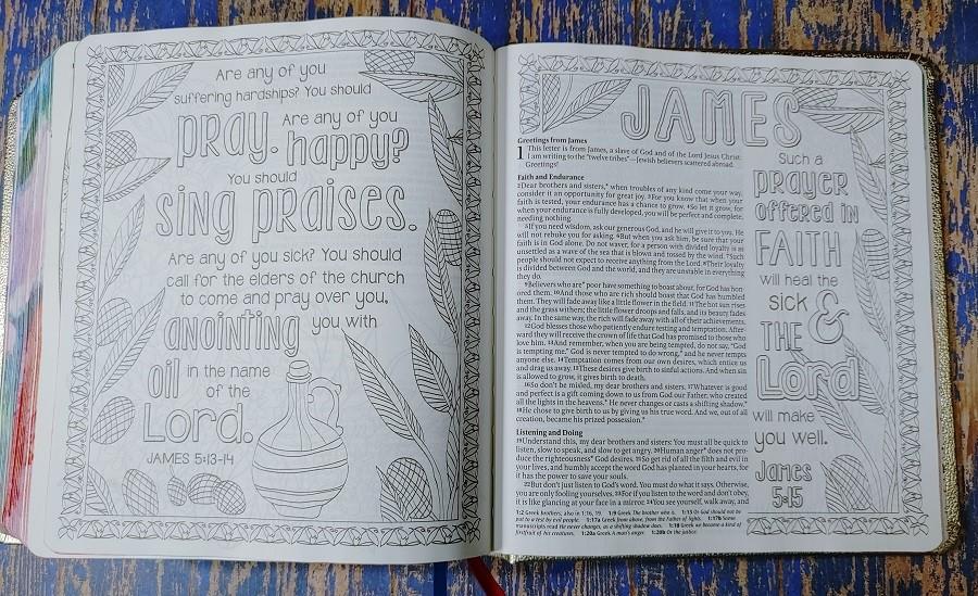 Inspire Prayer Bible Artwork James