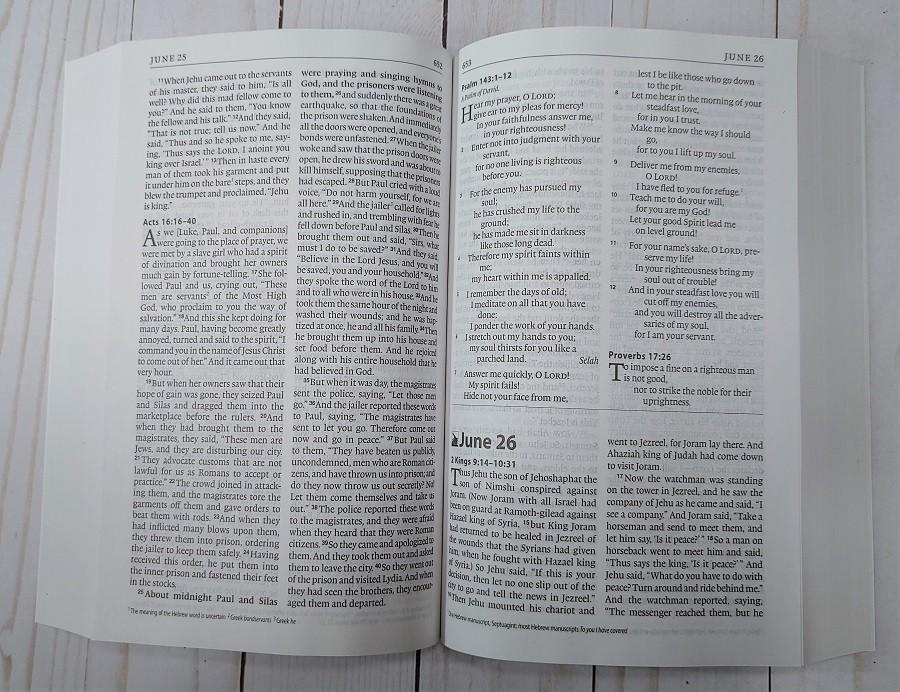 ESV One Year Bible June 25